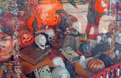 Bild des Tages: Happy Halloween