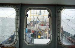 Texel: Raus mit dem Krabbenkutter