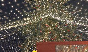 Köln: Wintermarkt mit Bratwurst vom Sternekoch