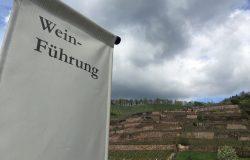 Wein aus Sachsen: Führung auf Schloss Wackerbarth